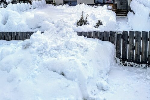 Apartment Fischnaller winter