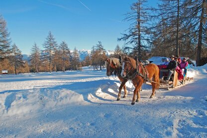 A carriage ride in winter through the Salten hiking area