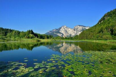 Calm at Lake Fennberg