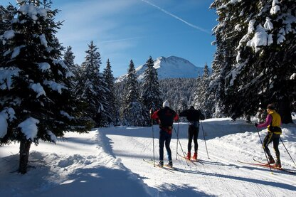 Cross-country skiing at the high-altitude trail in Aldein.