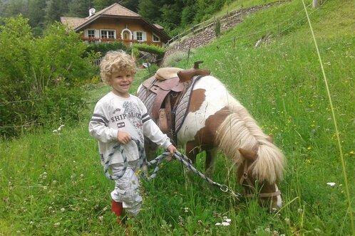 Ponyhof Olmi