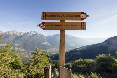 Venosta Valley High Mountain Trail