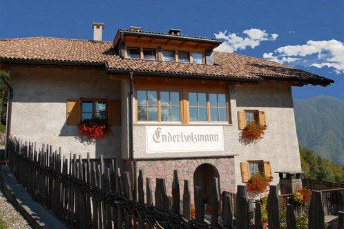 Enderholzmann