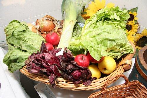 Gemüse aus dem Garten vom Friedrichshof