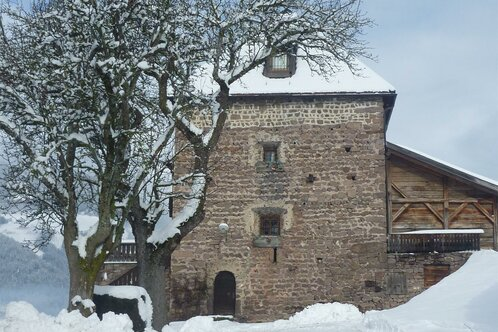 Farm Holidays Stofnerhof und Turm