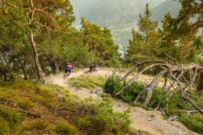 Barbarossa Trail