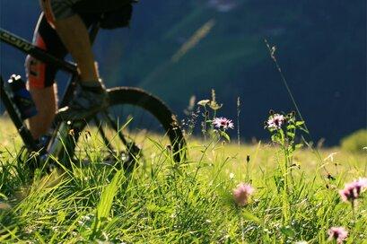 Itinerario bike a Rifiano